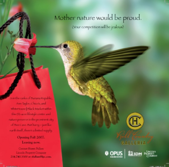 Hill Country Galleria marketing materials featured images from nature like hummingbirds.